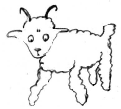 Please Sir Draw Me A Sheep Mind Of Mully Biz Haus Shoppe